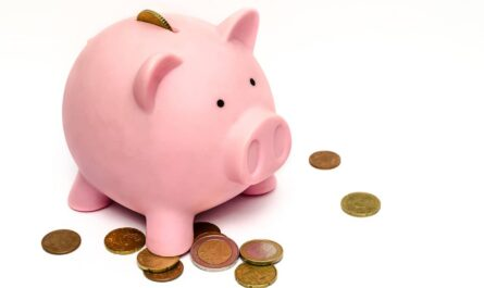 Financial Diet, Diet That Make You Rich!